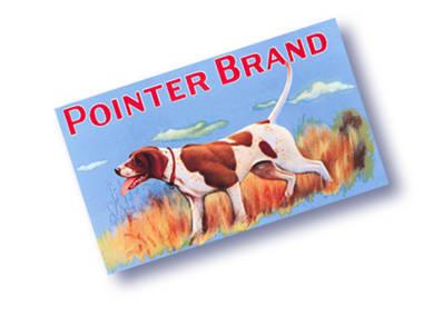 Pointer Brand